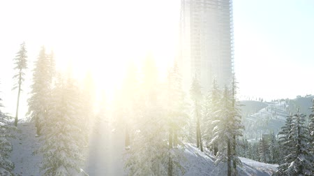 midtown : sity and forest in snow at sunrise