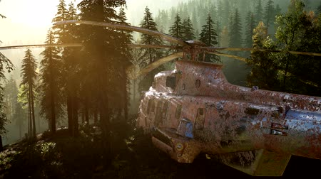 katonai : old rusted military helicopter in the mountain forest at sunrise Stock mozgókép