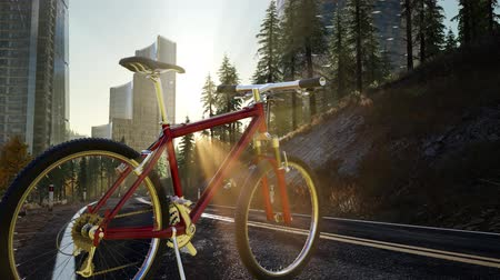 boky : City bicycle on the road at sunset