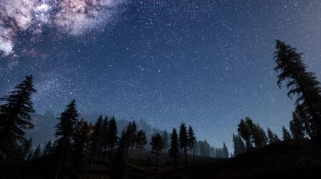 ladin : Milky Way stars with moonlight above pine trees forest