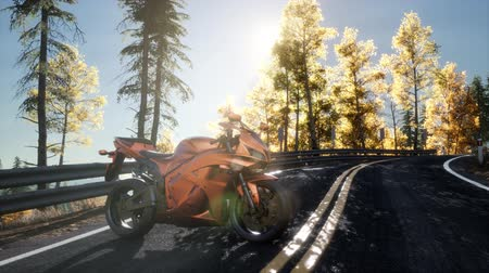 rider : sportbike on tre road in forest with sun beams