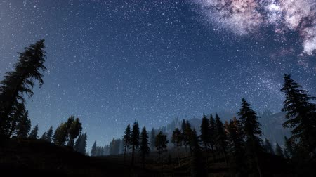 baixo ângulo : Milky Way stars with moonlight above pine trees forest