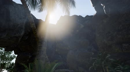 fotográfico : Sunbeam in cave with palms