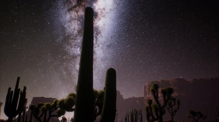 dead valley : The Milky Way above the Utah desert, USA Stock Footage