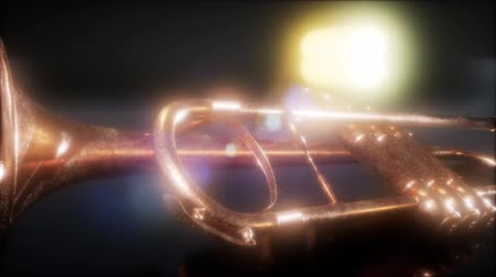 trumpet : brass trumpet in the dark