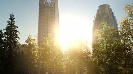 미드 타운 : skyscrapes and the forest park at sunrise