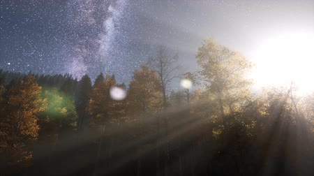 Словакия : Milky Way stars with moonlight above pine trees forest