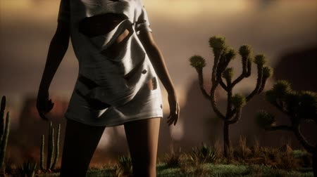 calor : woman in torn shirt standing by cactus in desert at sunset Stock Footage