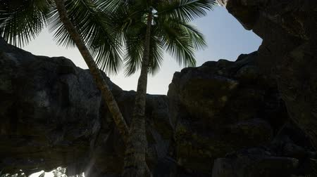 примитивный : Big Palms in Stone Cave with Rays of Sunlight