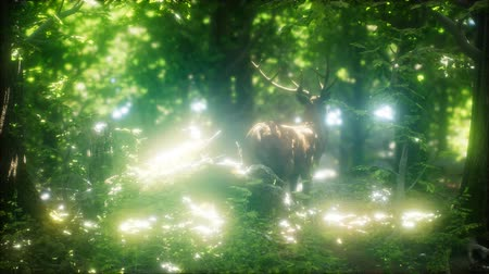 копыто : Great Red Deer in a Green Forest