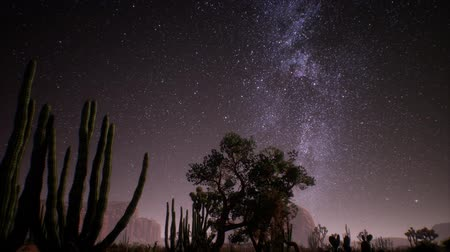 渓谷 : The Milky Way above the Utah desert, USA 動画素材