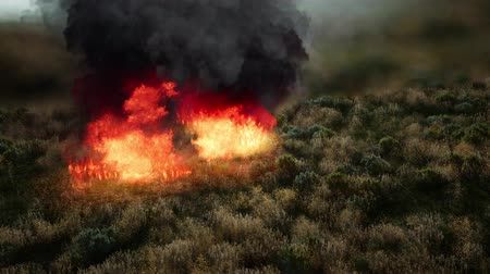 forest destruction : red fire in dry herb Stock Footage