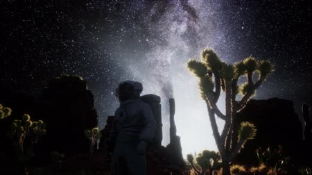 stovepipe wells : Astronaut and Star Milky Way Formation in Death Valley Stock Footage