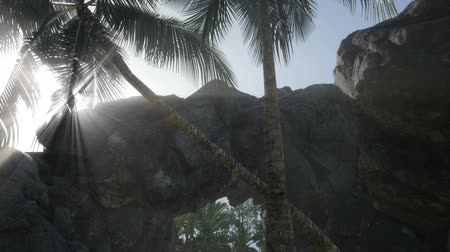 доисторический : Big Palms in Stone Cave with Rays of Sunlight