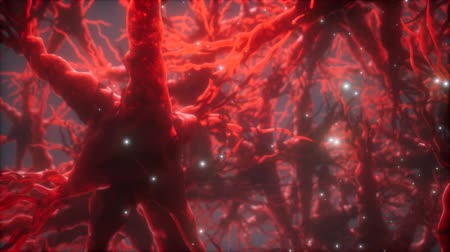 pensamento : Journey through a neuron cell network inside the brain Stock Footage