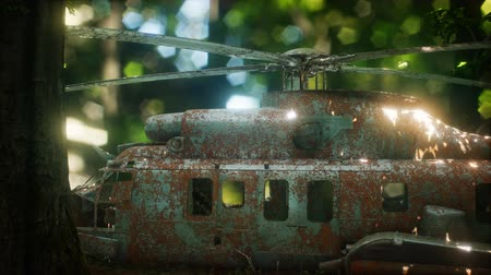 ranvej : old rusted military helicopter
