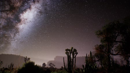 占星術 : The Milky Way above the Utah desert, USA 動画素材