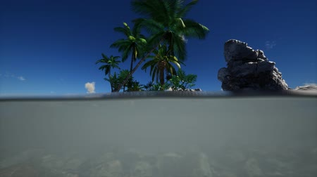 biodiverzitás : brown muddy water and palms on island