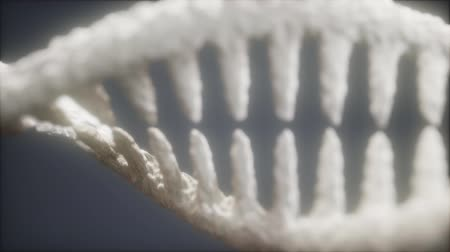 biotechnologia : DNA molecule on the grey background Wideo