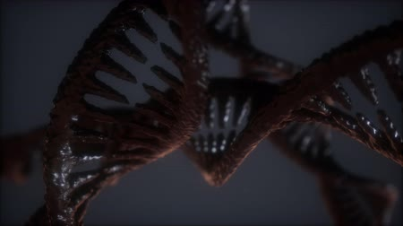 loop double helical structure of dna strand close-up animation