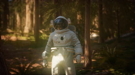 mise : lonely Astronaut in dark forest