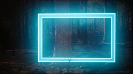 градиент : Neon glowing rectangle frame in the night forest Стоковые видеозаписи