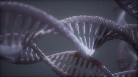 mikroskopický : double helical structure of dna strand close-up animation