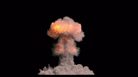 explodir : Nuclear bomb explosion. With Alpha channel Stock Footage