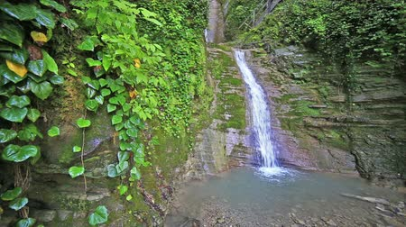 time flow : River in Caucasus mountains forest, waterfall near Sochi, Russia Stock Footage