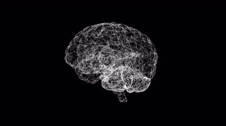 zihinsel : Human brain being formed by particles. Plexus structure evolving around. 3D render