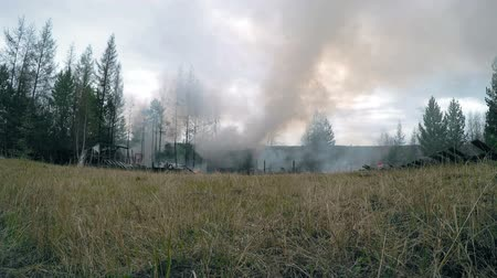 timberland : fire house near forests Full HD