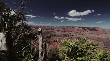 realeza : FullHD shot of the Grand Canyon, long Pan