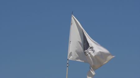 corte : Corsica Flag, France Stock Footage