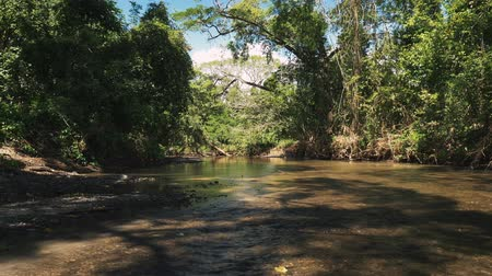 liaan : Prachtige rivier in de jungle, Costa Rica, Graded-versie