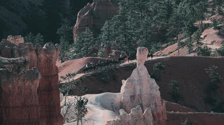 trilhas : Bryce Canyon National Park, Utah, United States - Graded Version