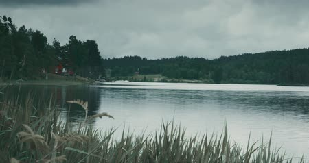 florestas : Norwegian Lake Stock Footage