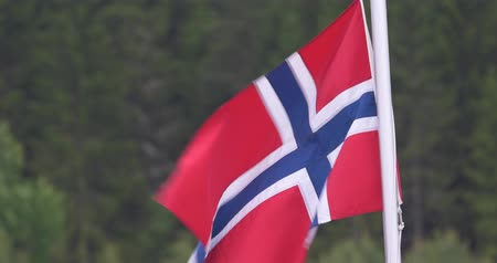 heraldicas : Norwegian Flag Archivo de Video