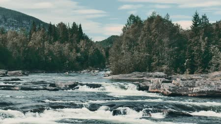 stony : Wild River Stream In Norway - Graded Version