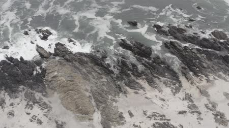 wavebreaker : Aerial, Beach At The Coast Of Pan De Azucar National Park, Chile - native 10 Bit (HLG) Stock Footage