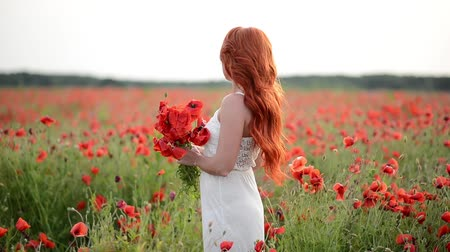 красные волосы : Young beautiful red-haired woman in a field with poppies. Slow motion.
