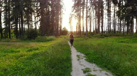hátsó megvilágítású : woman runner runs along forest trail at sunset Stock mozgókép