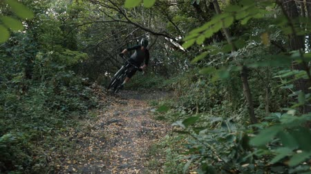 inspirerend : mountainbiker rent langs de weg in het bos