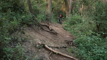 enduro : mountain biker rushes along road in forest, slow motion Stock Footage