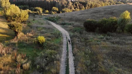 enduro : aerial view of cyclist walking down mountain road Stock Footage