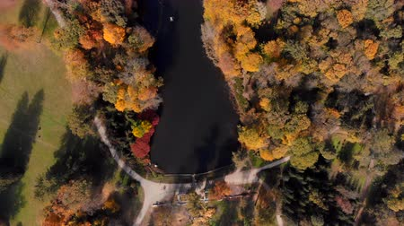 golden color : drone shot over fall in public park