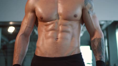 ficando : close up muscular male sport body in gym