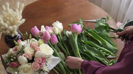 secateur : Female florists hands pruned with tulle stalks Stock Footage