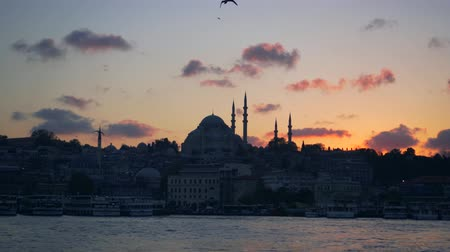 fiel : ISTANBUL, TURKEY - NOVEMBER 4, 2018: Panorama of evening Istanbul with view of mosque