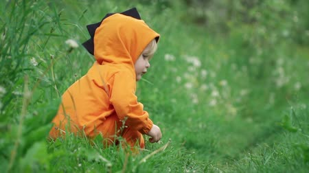 piada : Little boy in orange hoodie frolics in tall grass, slow motion Stock Footage