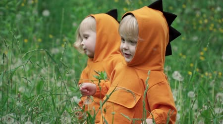 piada : Joyful little twin brothers in dragon costumes play in tall grass, slow motion Vídeos
